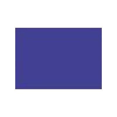 Intense Iris - Acid Dye - 25 g