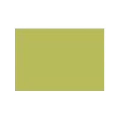 Lichen - Acid Dye - 25 g