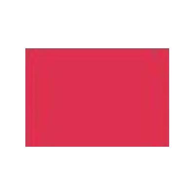 Chinese Red - Acid Dye - 25 g